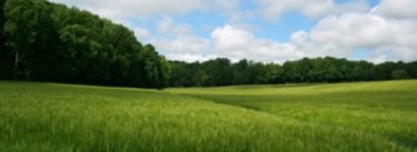 Terrain 800 m² à Fons – 30730 (GARD)